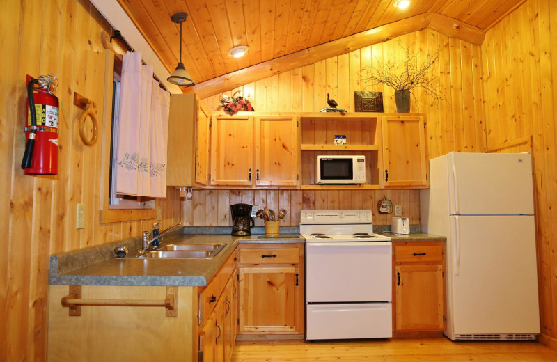 Cabin kitchen at Pine Terrace Resort.