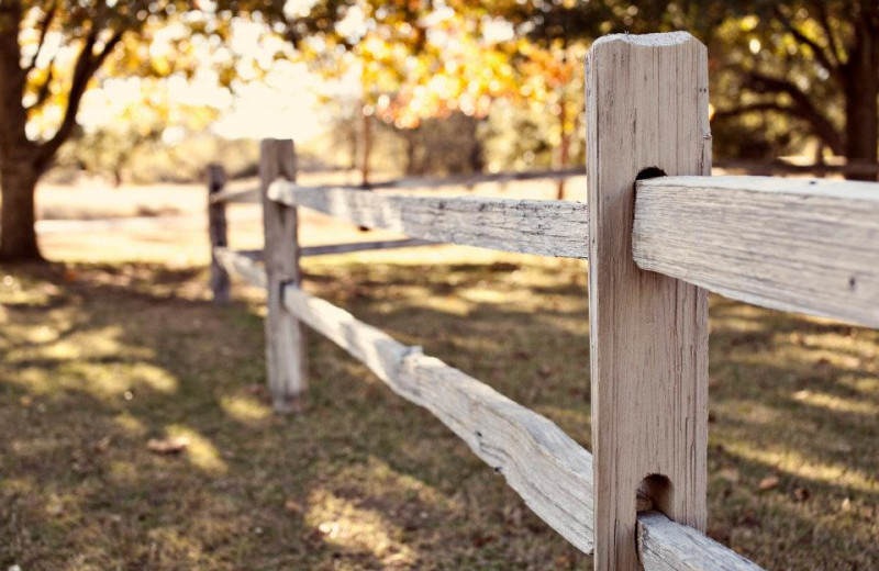Farm fence at Settlers Crossing.