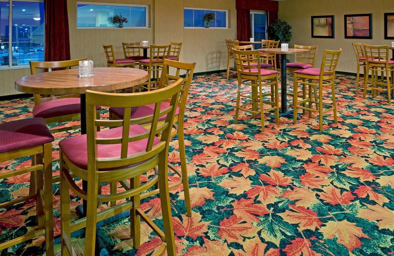 Lounge at Holiday Inn Minneapolis NW Elk River & Wild Woods Waterpark.