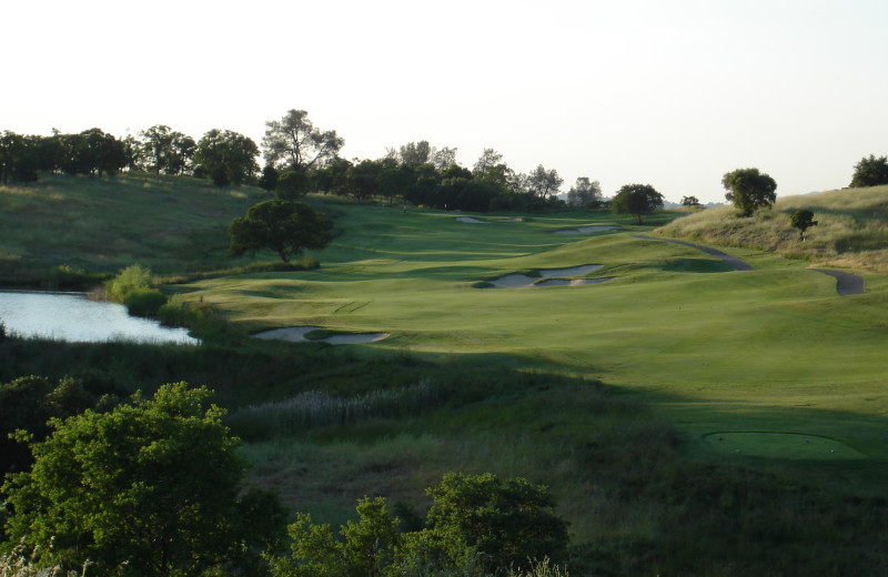 Golf course at Saddle Creek Resort.