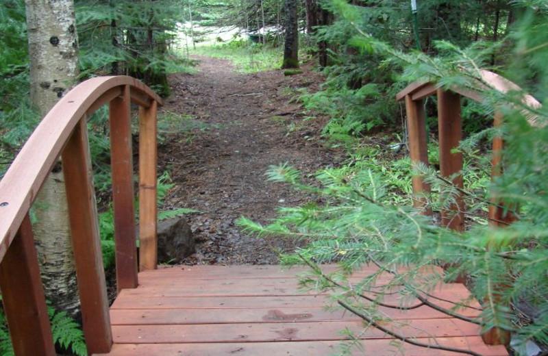 Walking path at Rockwood Lodge.