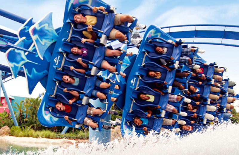 Rollercoaster near Villas of Grand Cypress.