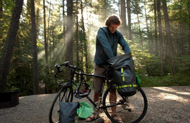 Biking at Mount Robson Inn.