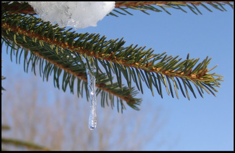 Winter at the Ramada Wisconsin Dells