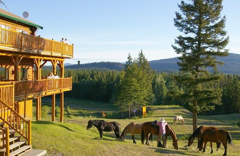 Exterior view of The Hills Guest Ranch.