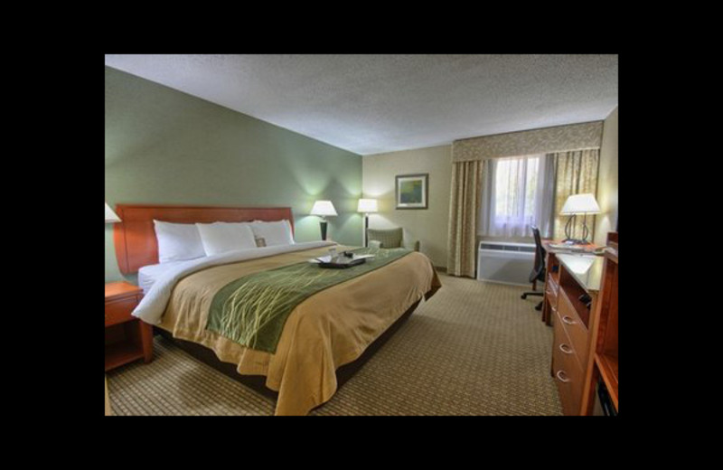 Guest room at Comfort Inn Near Greenfield Village.