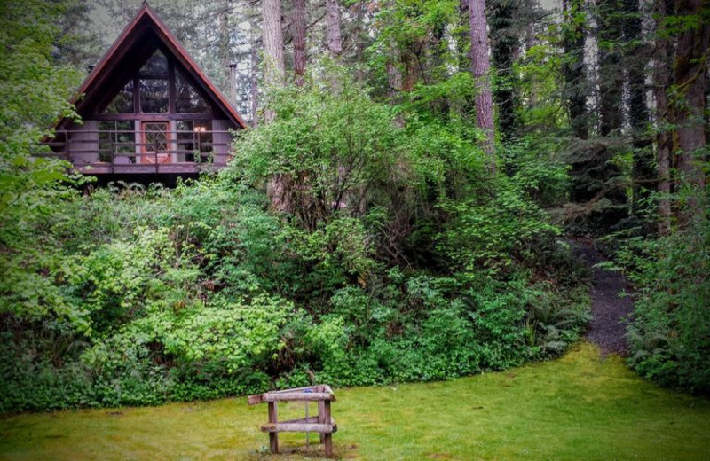 Cabin exterior at Zen River Retreat.