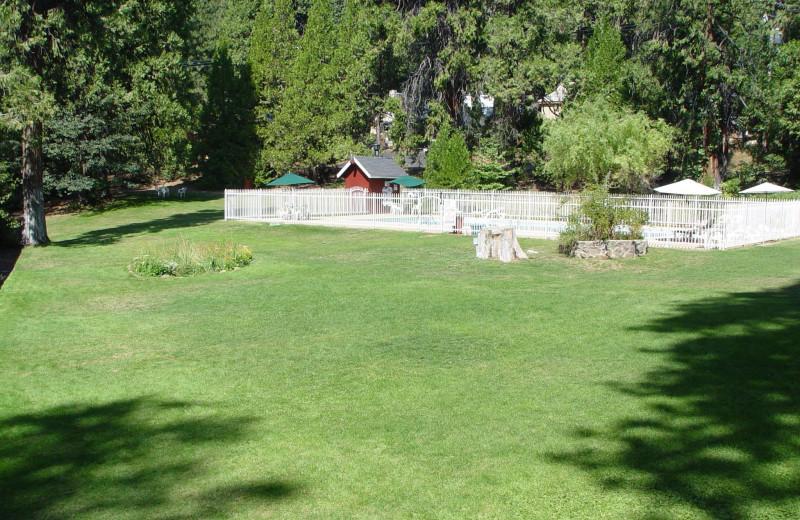 Grounds at Long Barn Lodge.