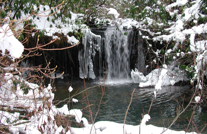 Waterfall at Caryonah Hunting Lodge.