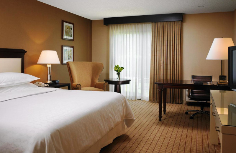 Guest room at Sheraton Sunnyvale Hotel.