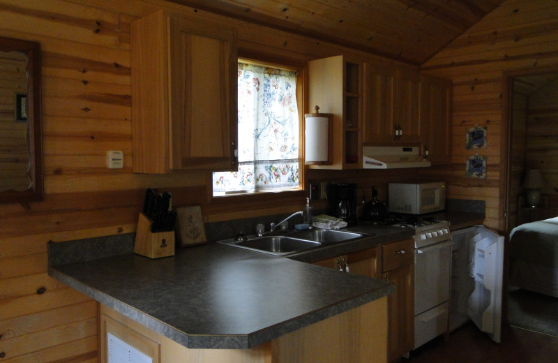 Cabin kitchen at Shakti Cove Cottages.