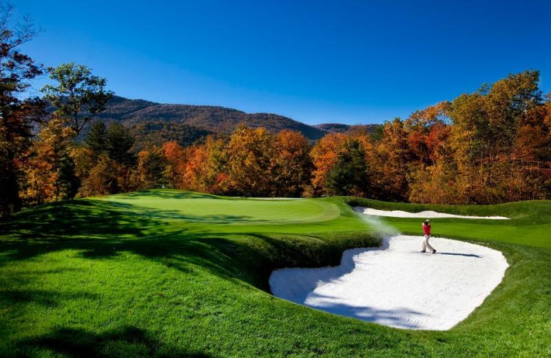 Golfing at The Greystone Inn.