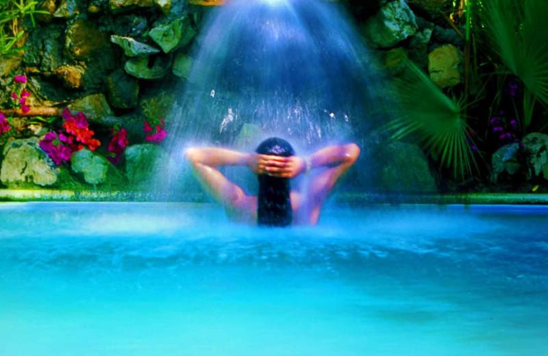 Spa at Maruba Resort Jungle Spa.