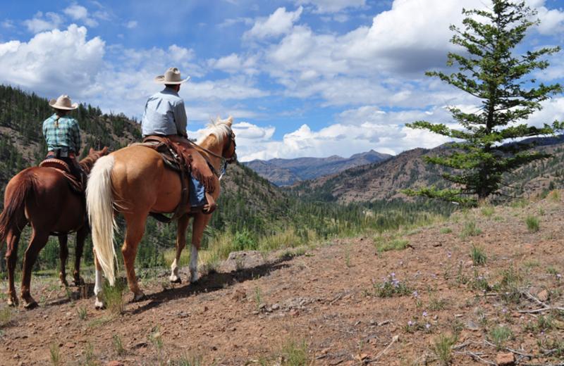 Horseback riding at Crossed Sabres Ranch.