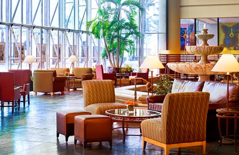 Lobby View at Sheraton New Orleans Hotel
