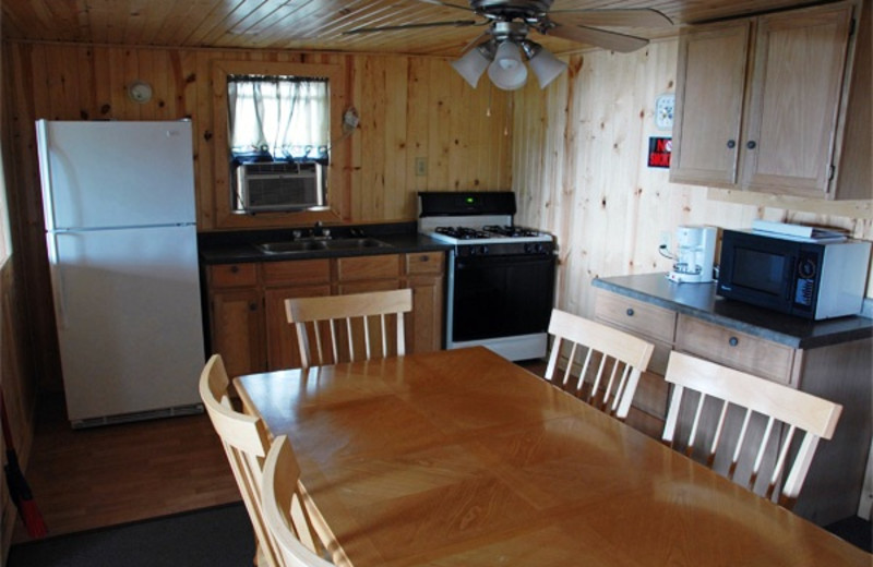 Cabin kitchen at Island View Resort on Nest Lake.