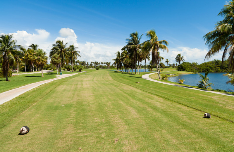 Golf near Key West Vacation Rentals.