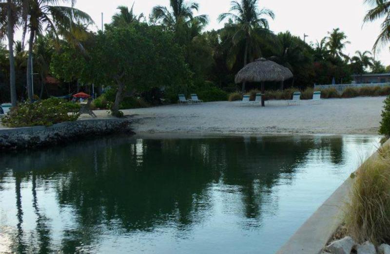 Beach at Coral Bay Resort.