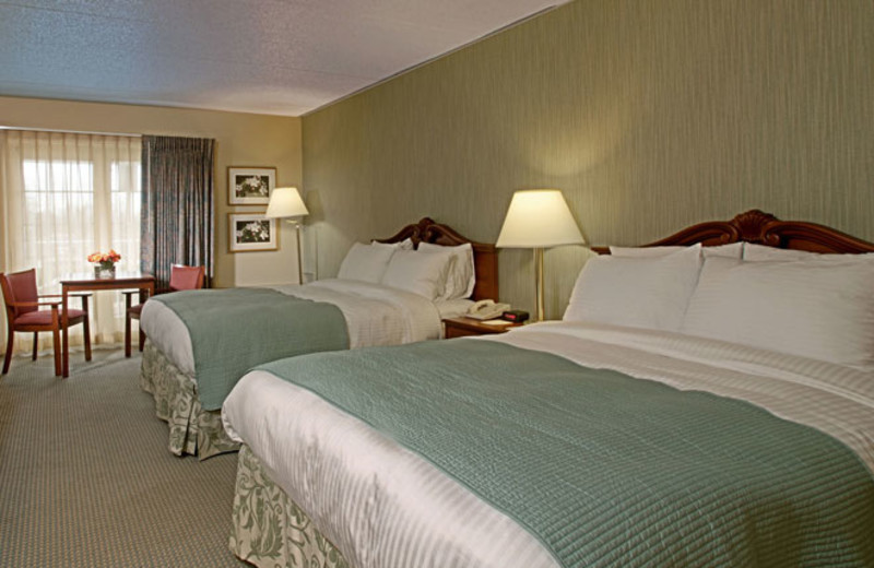 Guest room at Colony South Hotel.