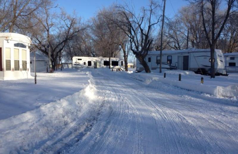 RV campground at Ten Mile Lake Resort.