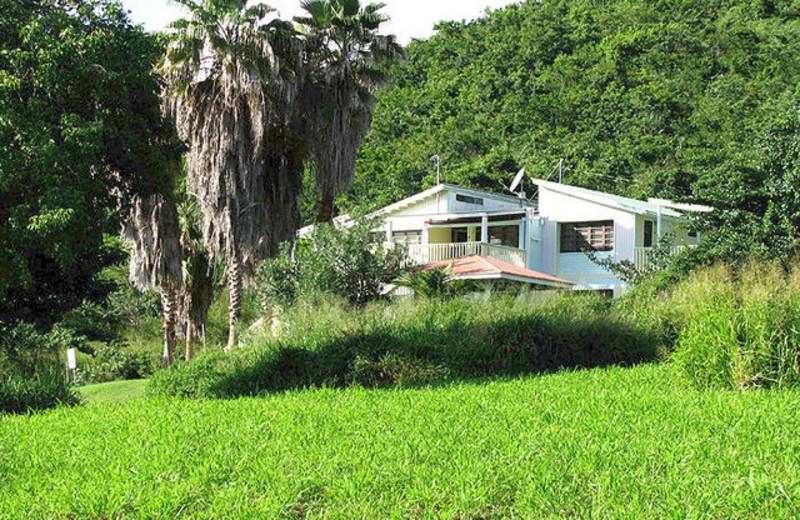 Exterior view of Tamarindo Estates Beach Cottages.