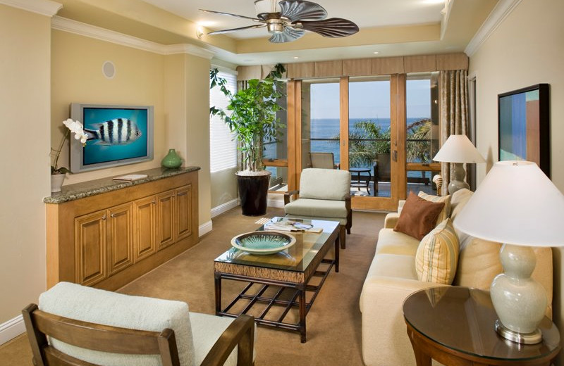 Suite Interior at Dolphin Bay Resort