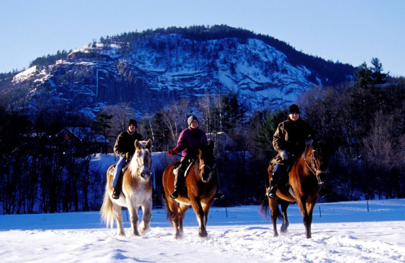 year round horseback riding at Farm by the River Bed & Breakfast with stable. 20 horses-owner owned and operated. Horseback riding offered daily to the public -horseback riding lessons and workshops, girl's getaway weekends are offered at selected times of the year.
