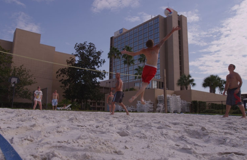 Volleyball court at Wyndham Lake Buena Vista Resort.