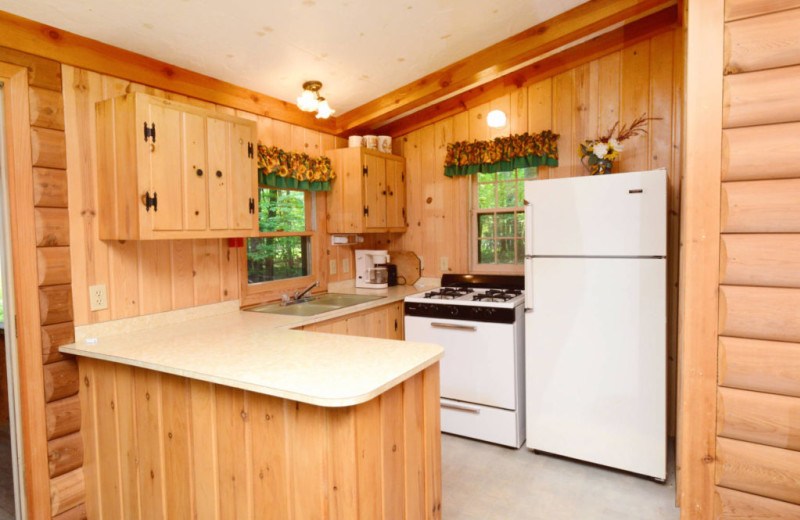 Cabin kitchen at Northland Lodge.
