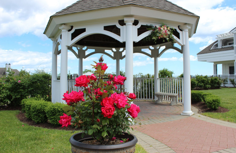 Gazebo at Waters Edge Resort and Spa.