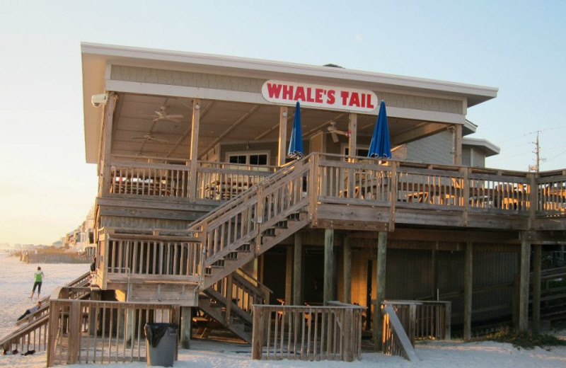 Whale Tail restaurant at Seascape Motel & Marina.