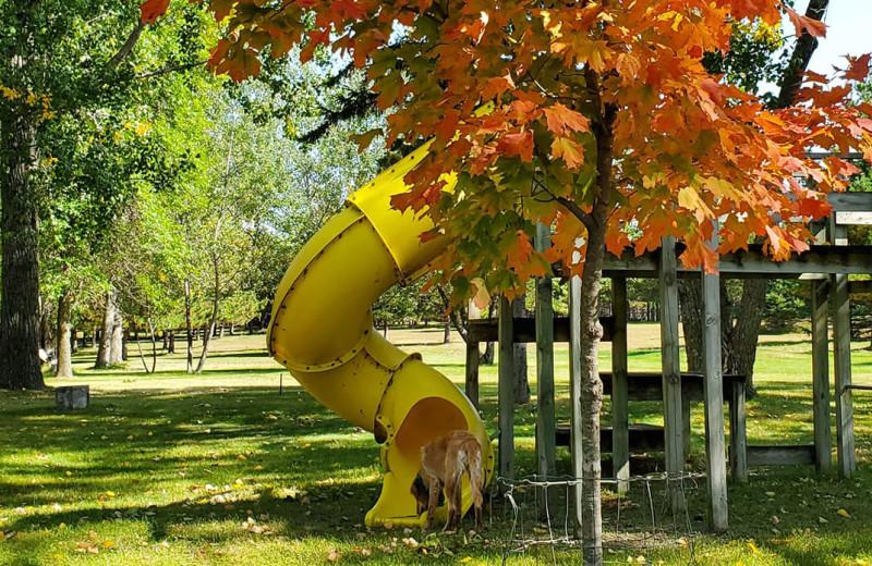 Fall at Whispering Waters Resort.