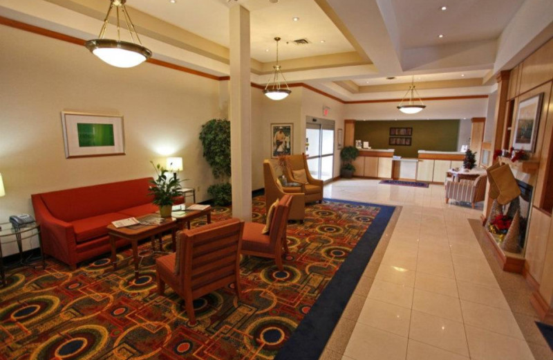 Lobby at the Fairfield Inn & Suites by Marriott Belleville