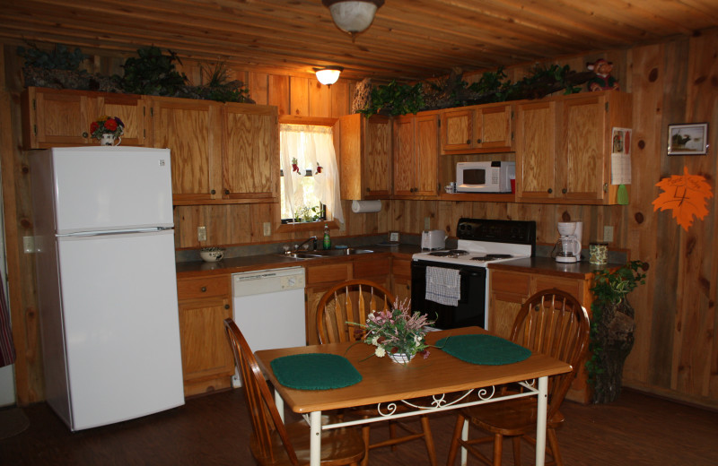 Moose Lodge kitchen at Heath Valley Cabins.