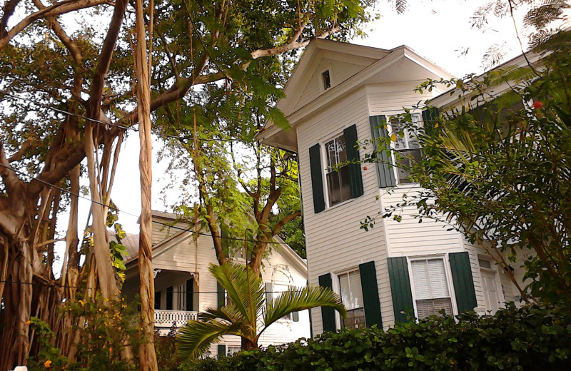 The Delany house next to The Banyan Resort.
