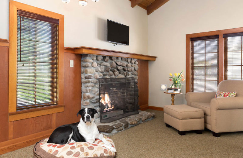 Features include king bed, gas fireplace,  walk in shower, pet friendly and an outside patio area.