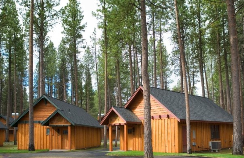 Cabin exterior at FivePine Lodge.