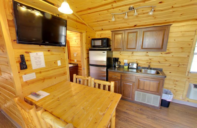 Cabin kitchen at Buffalo Point Resort.