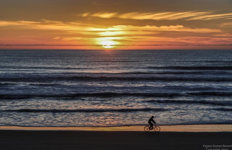 Beach biking at Pajaro Dunes Resort.