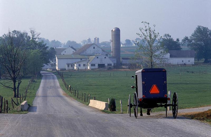 Amish country at The Inn at Leola Village.