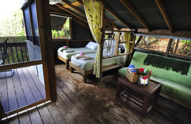 Guest room at Virgin Islands Campground.