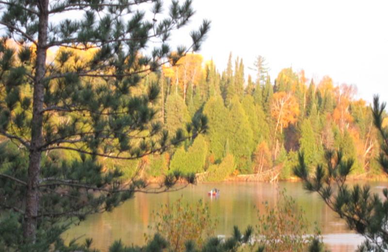 Fall colors at Timber Bay Lodge & Houseboats.