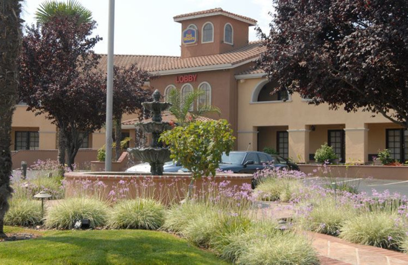 Exterior View of Best Western Plus Brookside Inn