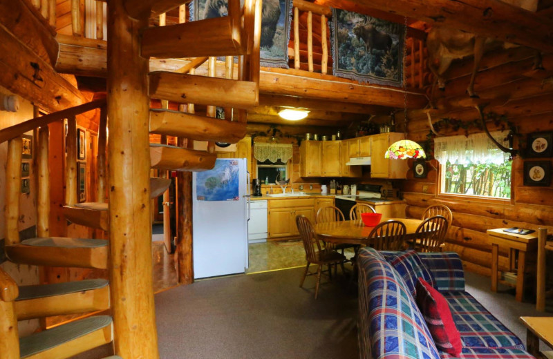 Cabin kitchen at Bear Paw Adventure.