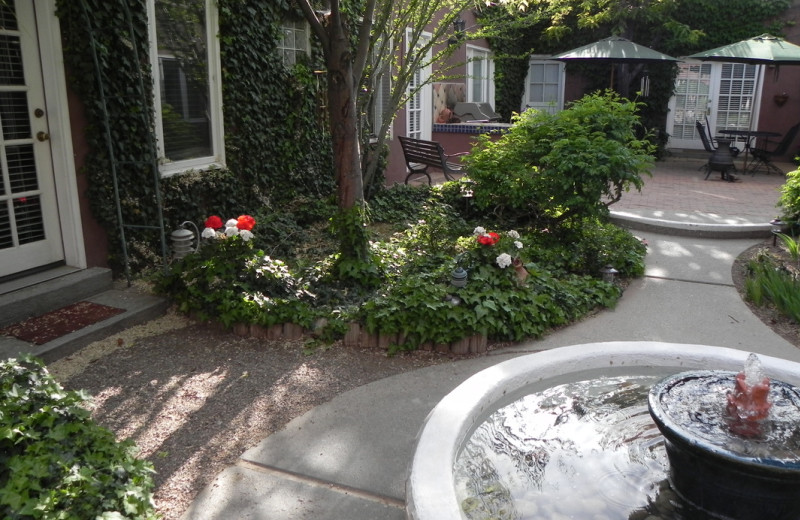 Courtyard at Sarabande Bed & Breakfast.