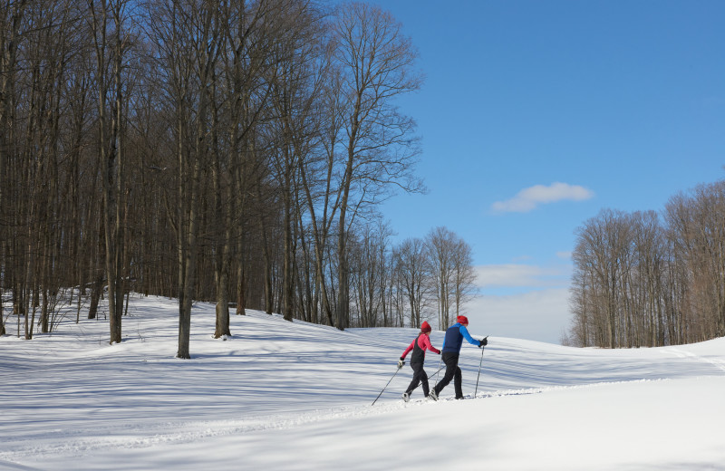 Cross country ski at Crystal Mountain Resort.