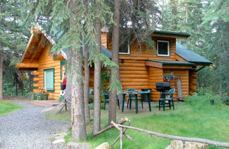 Exterior view of North Pole Cabins.