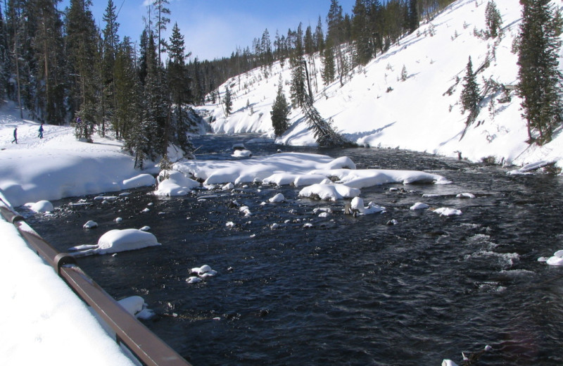 Winter view at Yellowstone Wildlife Cabins.