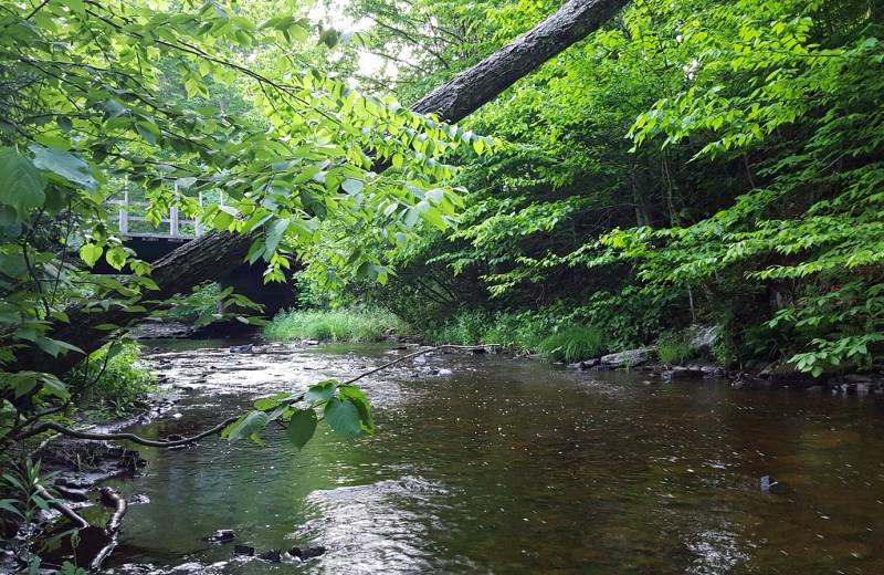 Creek at Tug Hill Resort.