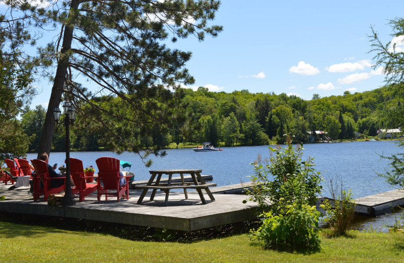 Many places to lounge on the dock at Heather Lodge.